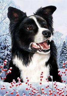 Border Collie Tamara Burnett Winter Dog Flag Dogs Dog Flag