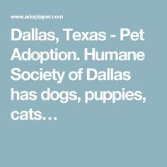 Dallas, Texas - Pet Adoption. Humane Society of Dallas has dogs, puppies, cats…