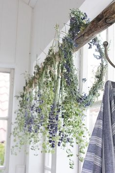 Lavender Cottage, Lavender Blue, French Lavender, Lavander, White Cottage, Lavender Fields, Rustic Shabby Chic, Shabby Chic Kitchen, Hygge
