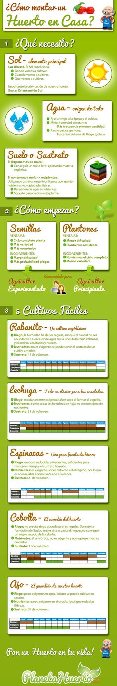 Guia para montar tu propio huerto en casa. #ecologia #huerto #infografia