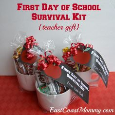 Teacher Gifts {for the first day of school}. with free printable tags Back to School Teacher Gifts Schul Survival Kits, Survival Kit For Teachers, Teacher Survival, New Teachers, Teachers Toolbox, Survival Food, First Day School, Back To School Teacher, School Fair