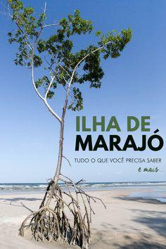 Guia completo com dicas e roteiro de 4 dias de viagem para a Ilha de Marajó, no Pará. Saiba como chegar no Marajó, onde ficar, o que fazer, onde comer e conheça todas as curiosidades de um dos destinos mais incríveis da região norte do Brasil.