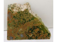 We just finished adding a new product on our online store:  Rainforest Jasper...  Check out what is new:  http://www.unconventionallapidarist.com/products/rainforest-jasper-lapidary-slabs-4-3-x-3-5-x-0-29-jaspslab2326?utm_campaign=social_autopilot&utm_source=pin&utm_medium=pin