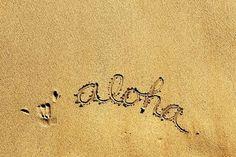 Aloha from Hawaii! Byu Hawaii, Hawaii Tours, Aloha Spirit, Summer Of Love, Summer Things, Pink Summer, Summer Beach, Summer Fun, Hawaiian Islands