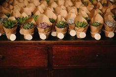 succulents in kraft paper | photo by Lato Photography http://weddingwonderland.it/2016/04/perfetto-matrimonio-botanico.html
