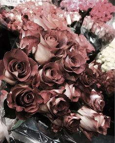 WEBSTA @beautygypsy Starting my morning out with coffee and buying fresh flowers. Happy Thursday.