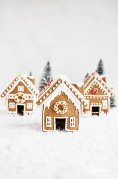 I have been wanting to make some homemade gingerbread houses for quite some time now and finally got the chance to this past week! Gingerbread House Icing, Homemade Gingerbread House, Halloween Gingerbread House, Gingerbread House Patterns, Cool Gingerbread Houses, Noel Christmas, Christmas Baking, Christmas Treats, Christmas Houses