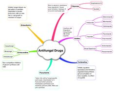 Anti-fungal drugs on Meducation