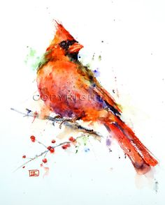Cardinal. watercolor on tile