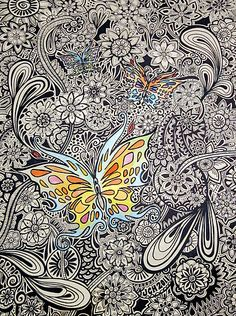 Zentangle / Butterfly Ink by GroovyGal available to purchase in card size and more. Imagine the time it must have taken to create this amazing piece of art. [safe link - no spam - ;) Mo]