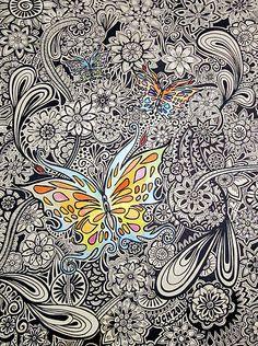 Zentangle / Butterfly Ink by GroovyGal