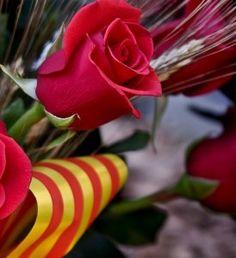Sant Jordi in Barcelona