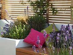Contemporary Garden Designers London - Jenny Bloom Garden Design - Portfolio