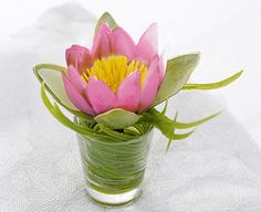 Original Gift Company Waterlily Artificial Flower of the Month - July Joy, constancy, patience...the Victorians associated specific virtues with certain flowers and these in turn were linked to a particular month of the year. Such a charming idea deserved to be revived, http://www.MightGet.com/february-2017-2/original-gift-company-waterlily-artificial-flower-of-the-month--july.asp