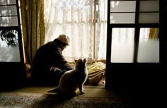 Miyoko Ihara has been taking photographs of her grandmother, Misao and her beloved cat Fukumaru since their relationship began in Their closeness has been captured through a series of lovely photographs. Crazy Cat Lady, Crazy Cats, I Love Cats, Cool Cats, Amor Animal, Son Chat, Japanese Photography, Japanese Cat, Here Kitty Kitty