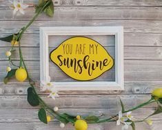 Vinyl on glass You are My Sunshine lemon sign with distressed wood frame is perfect for spring and summer, farmhouse and cottage decor. Lemon Kitchen Decor, Yellow Kitchen Decor, Kitchen Ideas, Vinyl On Glass, Lemon Crafts, Distressed Frames, You Are My Sunshine, Summer Crafts, Tray Decor