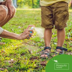 Mosquito Toronto provides all-natural mosquito and tick control services to homeowners in the Greater Toronto area. Tick Control, Pest Control, Ticks, Special Events, Toronto, Nature, Naturaleza, Nature Illustration, Off Grid