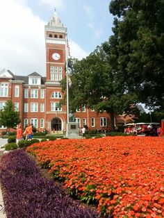 Clemson University. I would do absolutely anything to be able to call this school home.
