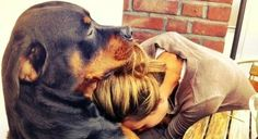 20 Reasons Why You Should Appreciate Your Dog More