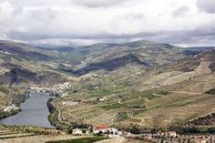 Vale do Douro (Trás-os-Montes e Alto Douro)