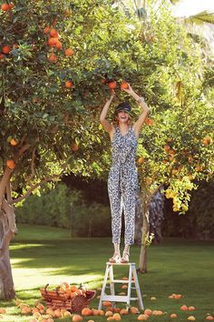 Blue Toile Jumpsuit, by Anthropologie Fruit Picking, Mein Style, Eye Candy, Anthropologie, Ideias Fashion, Fashion Photography, Family Photography, Street Style, Style Inspiration