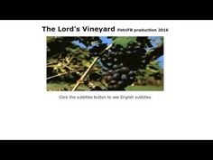 The Lord's Vineyard - YouTube