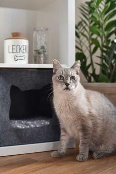 Nähanleitung und Schnittmuster für eine Katzenhöhle aus Filz. Passend für das IKEA Kallax Regal! Mit Video Tutorial auf dem Blog!#diy #nähen #ikea #katze