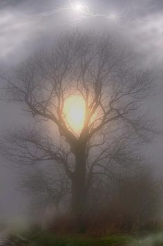I love the shadowing of the light in the mist.