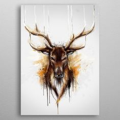 13 Best Wild Animal Displate Posters images in 2019