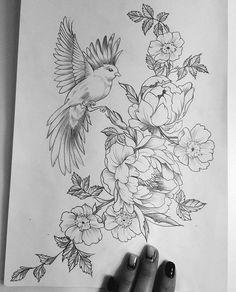 Bird or moth near vine to coverup? Bird or moth near vine to coverup? Bird Drawings, Pencil Art Drawings, Art Drawings Sketches, Tattoo Sketches, Tattoo Drawings, Body Art Tattoos, Bird And Flower Tattoo, Flower Tattoo Designs, Flower Tattoos