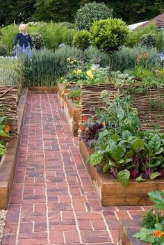 Phenomenon 24 Interesting Container Vegetable Gardening Ideas for Beginners https://24spaces.com/garden-exterior/24-interesting-container-vegetable-gardening-ideas-for-beginners/ #gardeningideas  #vegetablegardeningideas