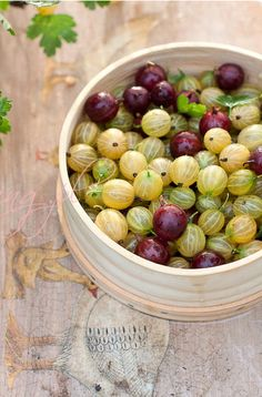 Gooseberries[agrest]