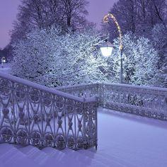 Ночь у Елагинского дворца