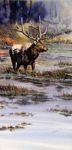 Lone Elk by Joe Garcia Watercolor ~  x