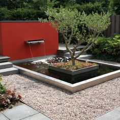 Fountain and garden pond- strong color on wall with fountain and water feature and tree