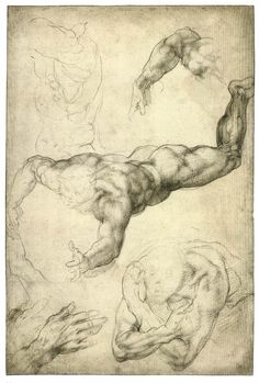 MICHELANGELO  Studies for a Flying Angel   Black chalk, 407 x 272 mm