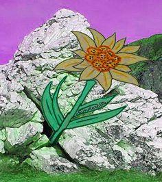 LA LEGGENDA DELLA STELLA ALPINA  Narra una leggenda ladina che in un paesino ai piedi di un monte viveva un giovane mugnaio, CEPIN, innamorato della bella e superba figlia del borgomastro. Quando CEPIN si dichiarò, lei, che non lo riteneva alla sua altezza, lo sfidò a portarle l'acqua della vita. Era un'impresa impossibile perché quell'acqua sgorgava da una fonte sulla cima della montagna ed era protetta da nani malvagi. (...) https://www.facebook.com/trafantasiaerealta.cinderella?fref=nf