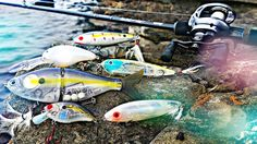"""Jake """"DALLMYD"""" Koehler Fishes Canada with Livingston's Electronic Lures - Fishhound - Scout"""