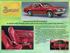 1976 Pontiac Sunbird - first car I bought and paid for! Mine was grey with grey primer.. $400 bucks in 1986