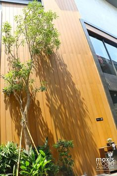 Project: Samai Sqaure Location: Toul Kork, Phnom Penh, Cambodia Product: Maxiswood QB-003, QB-001, QB-011 Color: Teak Designer: De-Axis Architecture Studio  Maxiswood Products - Maxis Facade - Maxis Soffit - Xtreme Facade - Thatch - Deck - WPC Renew (Coat)  For inquiries visit email us at nelly@maxiswood.com Visit our website www.maxiswood.com Viber and WhatsApp: +66658845805 We Chat and Line ID: yllencastro World Of Concrete, Wind Damage, Wood Facade, Wood Composite, Furniture Factory, Phnom Penh, Resort Style, Simple Elegance, Beautiful Buildings