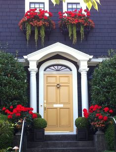 Yellow front door against red and dark blue. On window boxes not fond of the greenery hanging