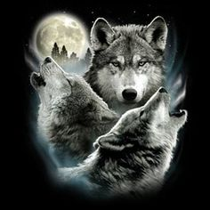 55f6de26 Details about Funny Animal T-Shirt Wolf Moon Wolves Howling Moonlight  Wilderness Tee