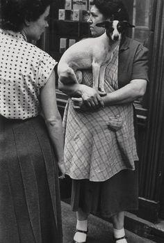 Paris 1953    Photo: Elliott Erwitt.....Ronny before his spots.. he is immortal!!!