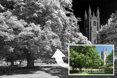 Recreate infrared photography in #Photoshop http://www.creativebloq.com/photoshop/recreate-infrared-photography-photoshop-1012952#