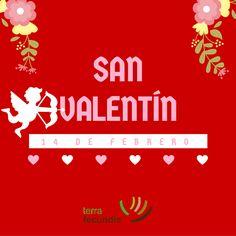 Gráfica de San Valentín para las redes de Terra Fecundis.