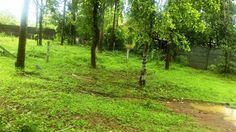 6 cent Residential plot Near Mundur
