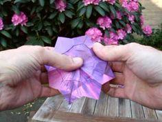 Origami Violet Flower