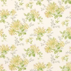 Laura Ashley honeysuckle trail camomile yellow wallpaper
