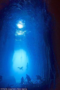 This underwater paradise was found on Jeju Island, South Korea