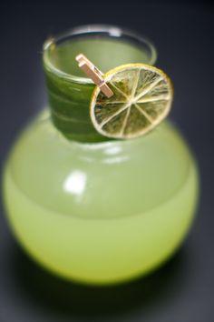 Bar Drinks, Bonsai, A Table, Lime, Fruit, Limes, Key Lime, String Garden